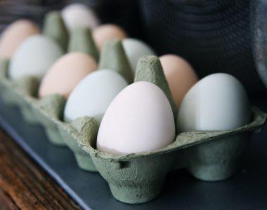 Eier vom Bauernhof